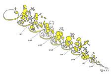 描述「人類進化史」的畫稿 | from drezier's blog [日本生死書] dated 2006/11/26