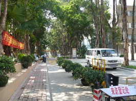 ZhuYing-03
